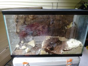 Reptile tank and snake hook for Sale in Tacoma, WA
