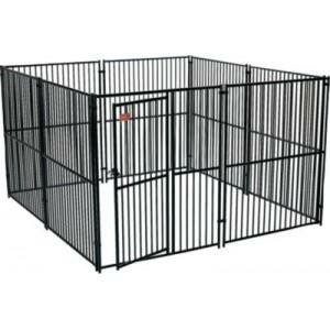 Lucky dog kennel or chicken cage for Sale in North Providence, RI