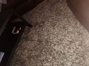 Area Rug Shaggy carpet 9 x 12 for Sale in HUNTINGTN BCH, CA
