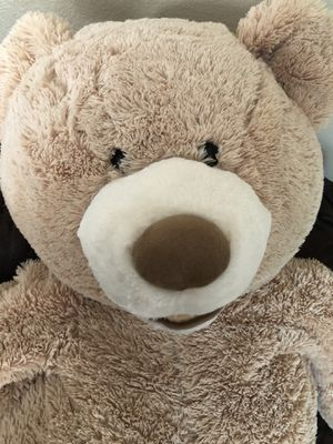 5 foot giant soft Teddy bear. Not firm on price for Sale in Renton, WA