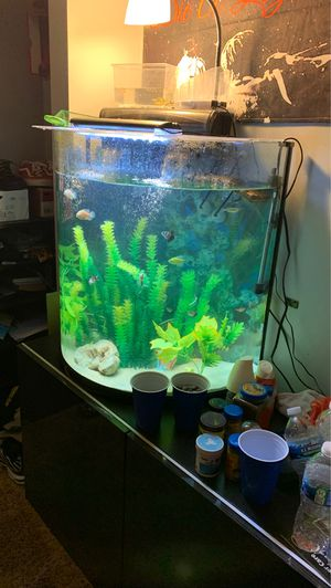 30 gallon dome fish tank for Sale in Columbus, OH
