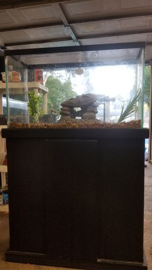 30 gallon fish tank setup for Sale in Joint Base Lewis-McChord, WA