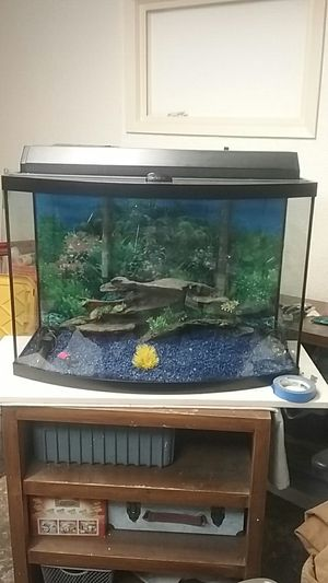 35 gallon aquarium fish tank full setup 3 filters to heaters and everything you see $200 for Sale in San Leandro, CA