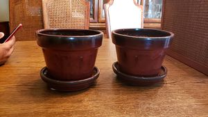 6-inch planter pots for Sale in Arlington, VA