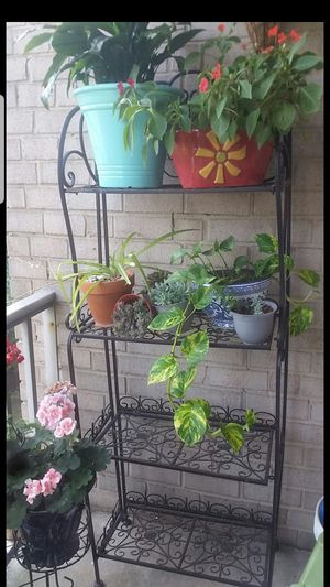Plant stand for Sale in Silver Spring, MD