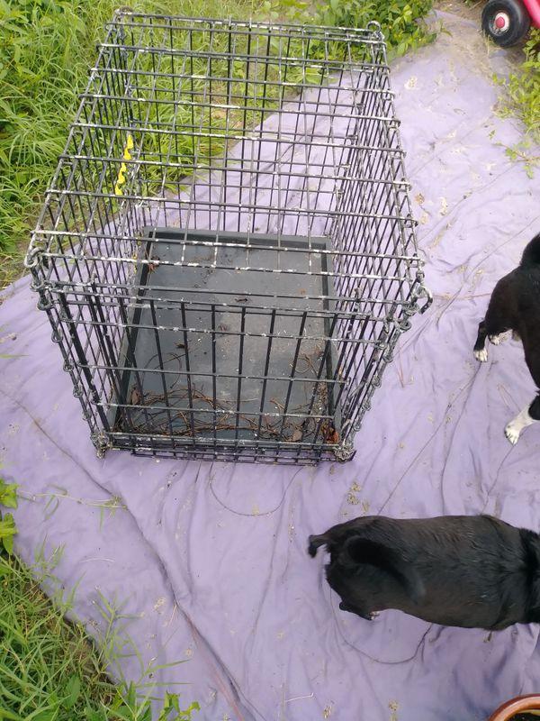 Med-large dog cage/kennel
