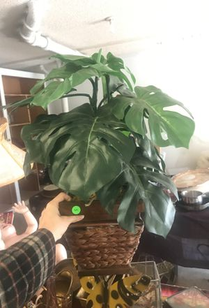 Fake monstera plant for Sale in Portland, OR