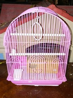 Pink First Cage For Parakeet Are Small Birds for Sale in Compton,  CA