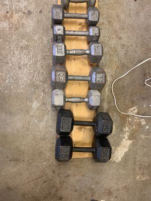 Hex Dumbbell Set for Sale in Kirkland, WA