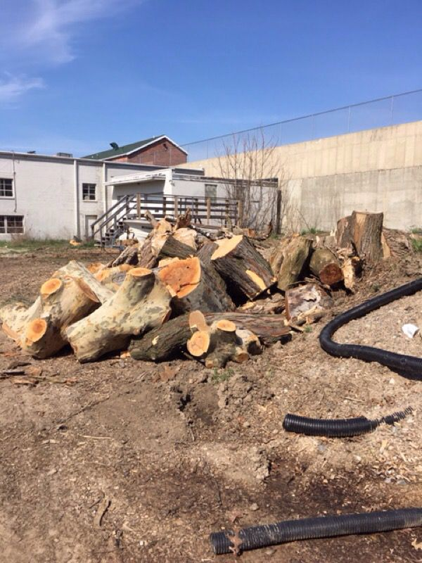 Free wood 1410 28th