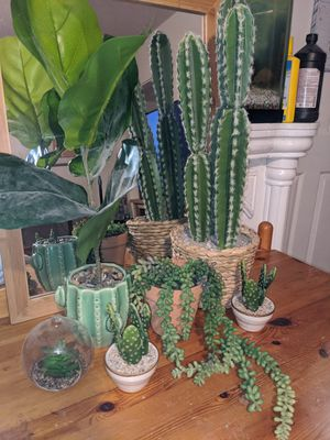 Succulent fake plants for Sale in Long Beach, CA