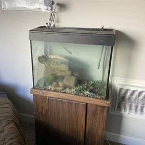 Fish Or Turtle Tank for Sale in Canyon Lake, CA