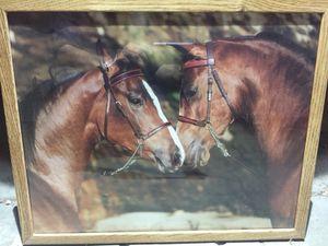 Framed horses photo for Sale in Denver, CO