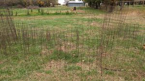 Wire tomato/ plant cages for Sale in Derby, KS