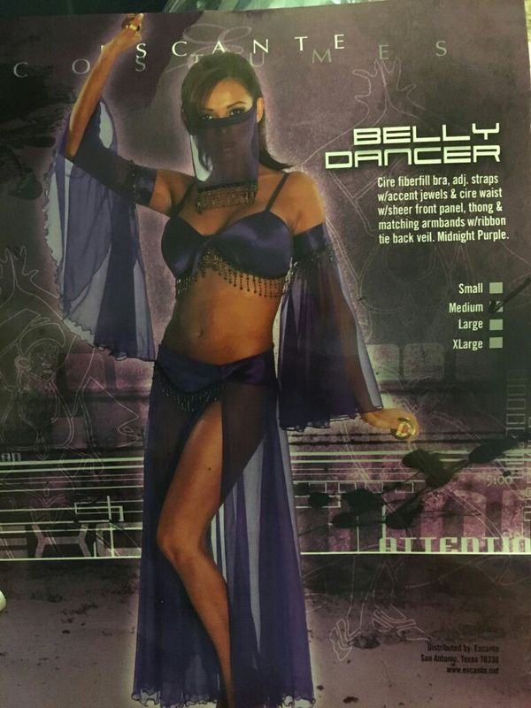 #2 New Size Large 6pc Harem Girl/Belly Dancer Costume