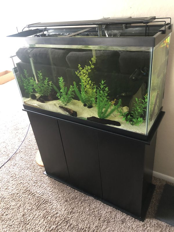 Aquarium (All-Inclusive)