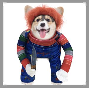 Dog chucky costume (Med) for Sale in Norwalk, CA