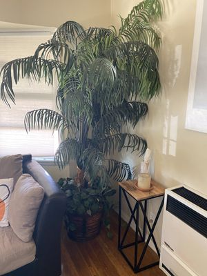 Wicker Potted faux palm tree for Sale in Los Angeles, CA