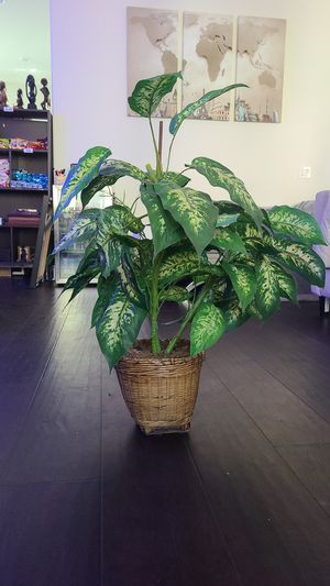 Fake House Plant for Sale in Tustin, CA