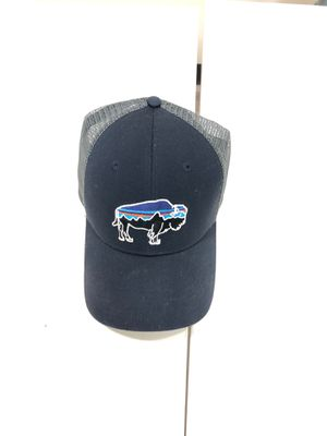 Patagonia Hat for Sale in Needham, MA