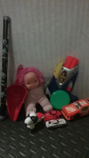 Toy mix boy and girl for Sale in Cedar Park, TX