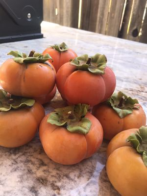Persimmon!!!! 5lbs X $5.00 👍 for Sale in Vallejo, CA