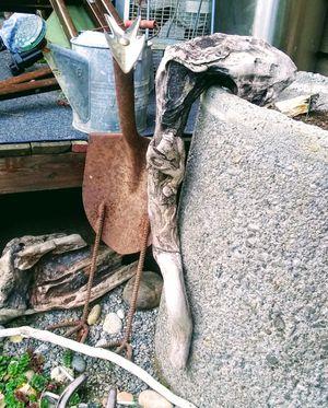 Hand made road runner garden critter for Sale in Bremerton, WA