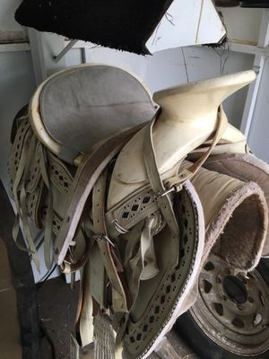 Horse saddle for Sale in Denver, CO