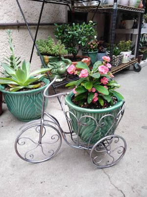 BIKE & PLANT for Sale in Paramount, CA