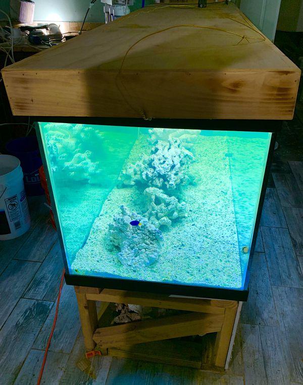 Equipment for Large Aquarium and Filter