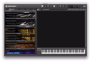 Kontakt 5 with expansions for Sale in Chicago, IL