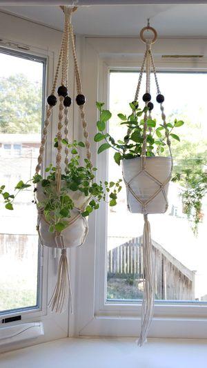 Indoor hanging planter for Sale in Fort Belvoir, VA