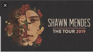 Shawn Mendes Concert Ticket for Houston, TX July 25, 2019 for Sale in San Antonio, TX