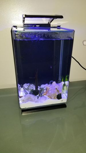 MarineLand fish tank 5gal with light for Sale in Queens, NY