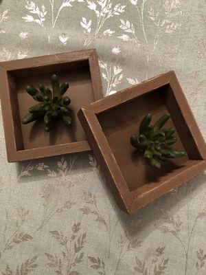 Succulent Frame Decor for Sale in Glenarden, MD