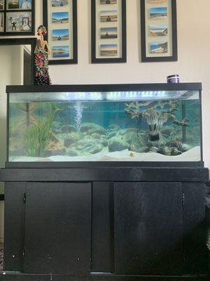 75 gallon fish tank for Sale in Watsonville, CA
