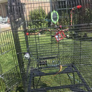 Bird cage with toys for Sale in Denver, CO