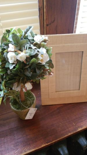 Picture Frame and Flower Plant for Sale in Saint Paul, MN