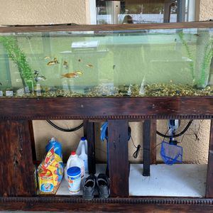 125 gallon aquarium for Sale in Spring Hill, FL