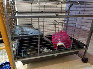 Animal Cage for Sale in West Chester, PA
