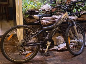 Giant MTX 250 Charcoal Boys for Sale in New York, NY