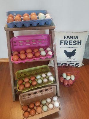 Farm fresh chicken eggs for Sale in Lake Stevens, WA