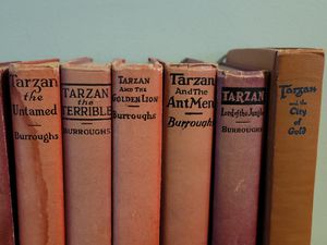 Tarzan 11. volume set. Edgar Rice Burroughs for Sale in Pillager, MN