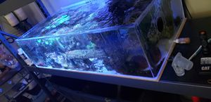 Frag tank for Sale in Temecula, CA