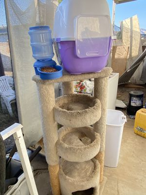 Cat stand, food dispenser and litter box for Sale in Yucaipa, CA