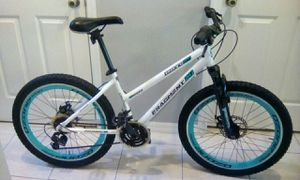 BEAUTIFUL MOUNTAIN BIKE SIZE 24 IN EXCELLENT LIKE NEW CONDITION for Sale in Orlando, FL
