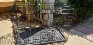 Large dog crate, bed, cover for Sale in Southeast Raleigh, NC