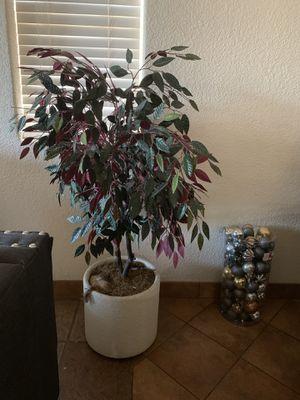 Fake home plant for Sale in Modesto, CA