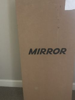 The Mirror for Sale in Raleigh,  NC