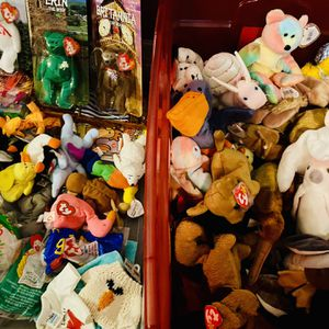 Lot Of Ty Beanie Babies for Sale in St. Petersburg, FL
